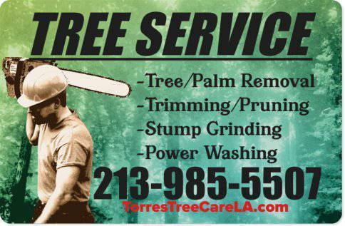 TREE REMOVALS, TREE TRIMMING, PALM TRIMMING, BRUSH CLEARANCE AND MORE (TREE REMOVALS, TREE TRIMMING,
