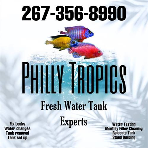 Fresh Water Tank Cleaning