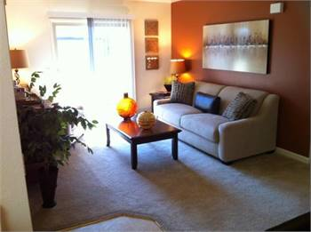 1br - 0575ft2 - We've found your next apartment, and it's amazing!